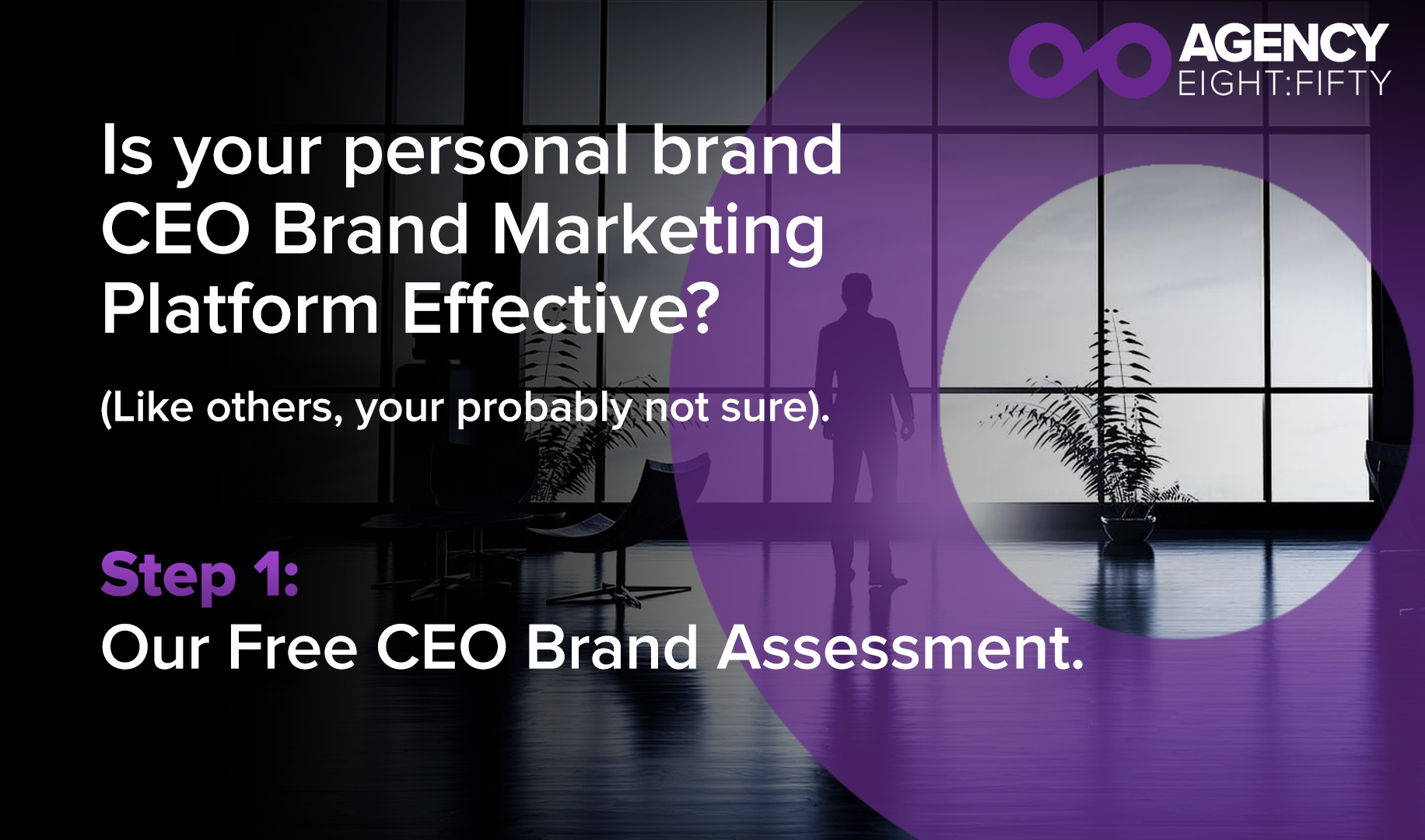 CEO Assessment